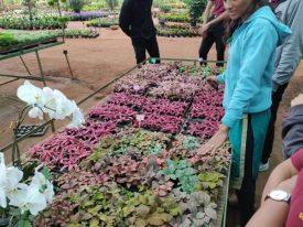 Horticulture visit-20190918-WA0037
