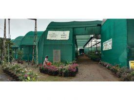 Horticulture visit_20190918_084118